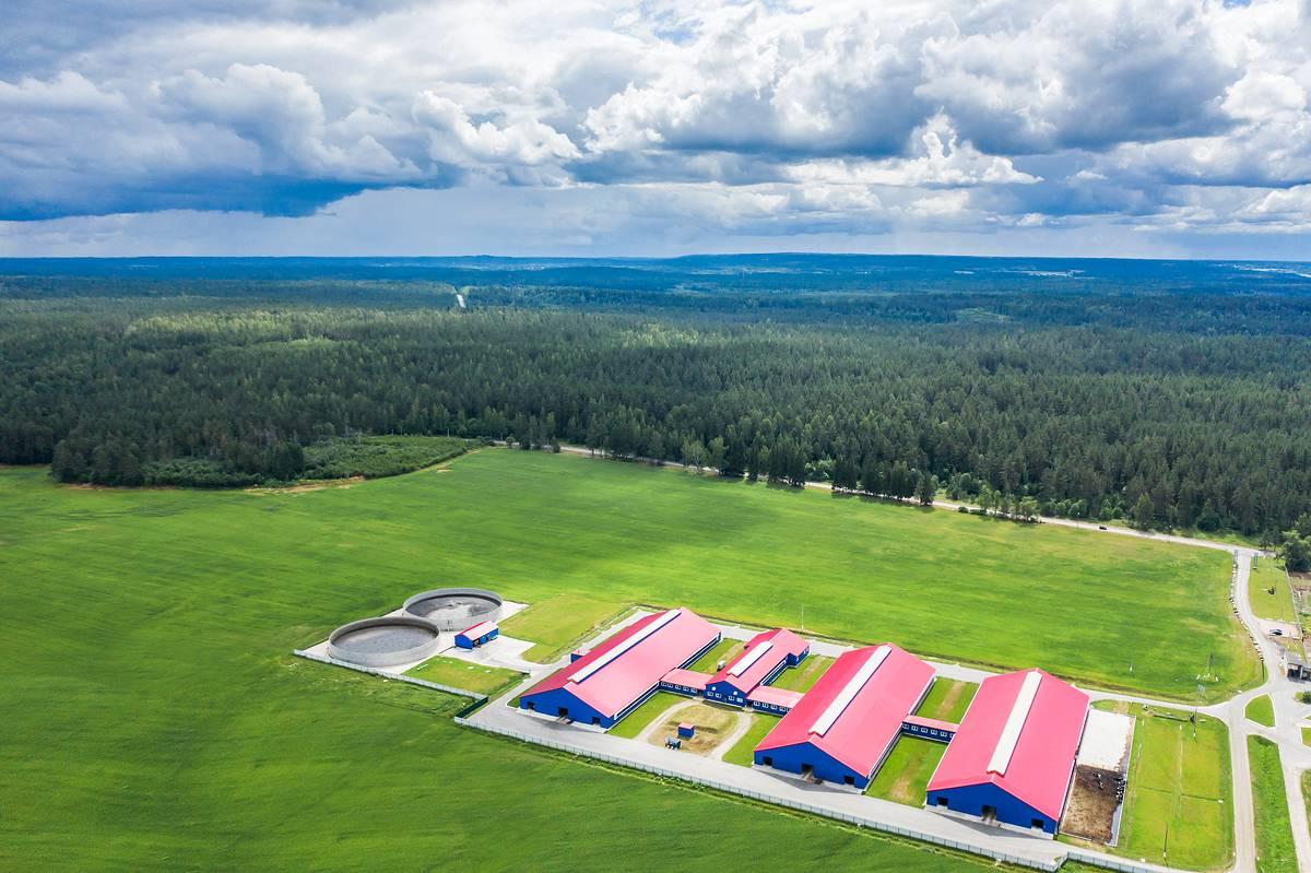 Ферма в СЗ регионе