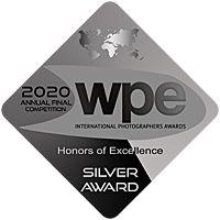 WPE Awards silver 2020